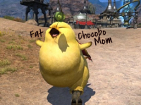 Fat Chocobo Mom